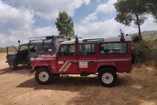 avi jeep tours